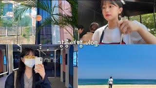 [Vlog] 강릉 1박2일 여행(안목해변, 송정해변, …