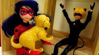 Леди Баг и Супер-кот - Маленькая собачка, пицца и пылесос
