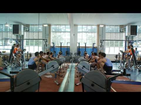 Sport & Performance - University College Dublin - UCD