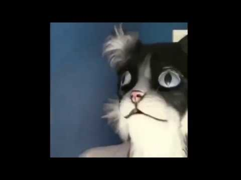 The Love Doctors - Guy In Cat Mask Scares His Cats!
