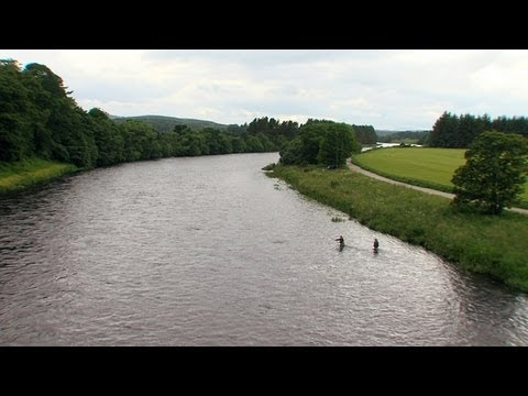 Salmon Fishing Lower Crathes & West Durris Salmon Beat - Fishing TV
