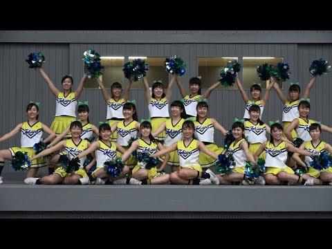 常磐大学高等学校チアダンス部11回『ハイスクール・ミュージカル』@ときわ祭2017