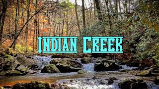 Camping on Indian Creek in the Cherokee National Forest, TN