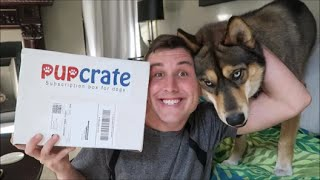 PupCrate Unboxing | March 2016
