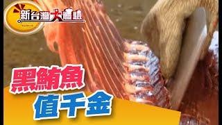 切黑鮪魚功法  魚身每一寸都講究!鬼椒魔力嗆爆你的味蕾《新台灣大體驗》第125集 廖慶學
