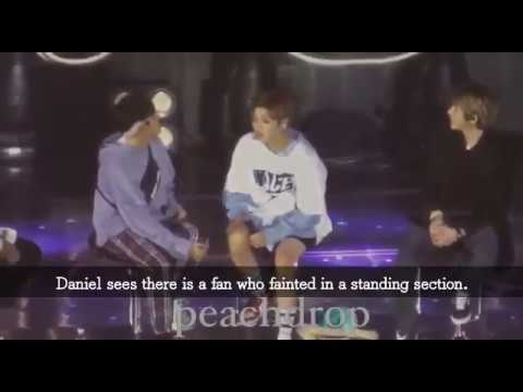 Daniel sees there is a fan who fainted in a standing section