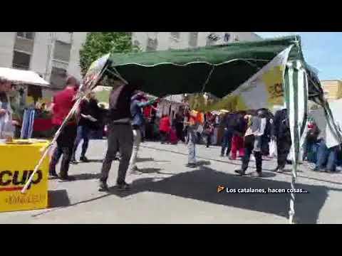 Un ciudadano da la vuelta a la tortilla y destroza una carpa de la CUP en Manlleu (Barcelona)
