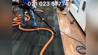 Christchurch Carpet Cleaning Services, www.3plestar.nz