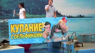 Шоу дельфинов Аквапарк Немо Анапа