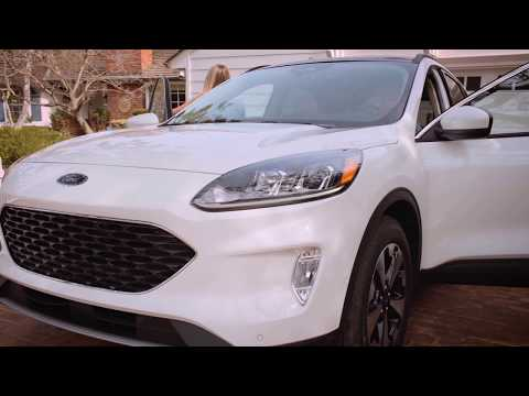 2020 Ford Escape Headlights & Tail Lights