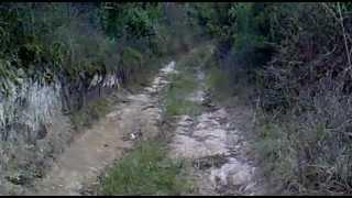 Repeat youtube video CACERIA EN NOGALES VERACRUZ