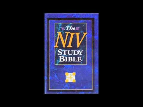The Book of Esther (NIV Audio Bible Non Dramatized)