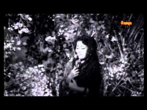 Pottichirikkuvaan | Song from the movie Kuttikuppayam | Malayalam Movie