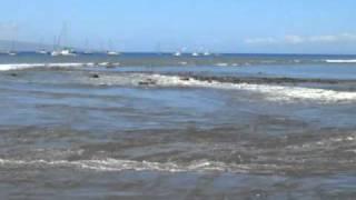 Tsunami Maui Lahaina Harbor - March 2011