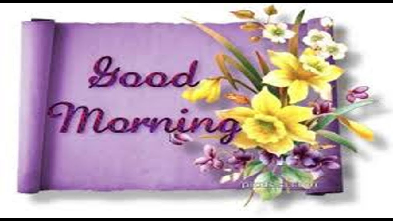 Good morning videos have a happy joyful blessed morning video good morning videos have a happy joyful blessed morning video greeting card youtube m4hsunfo