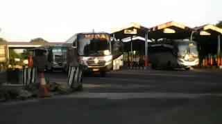 Perang klakson bus Sugeng Rahayu & Mira