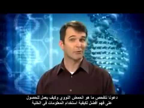 خرافة التطور وحقائق علم المعلومات الجديد evolution Vs information science facts