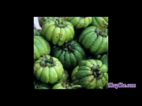 garcinia-cambogia-fruit-&-extract-safety,-reviews-&-diet-|-a-pure-weight-loss-miracle-supplement?