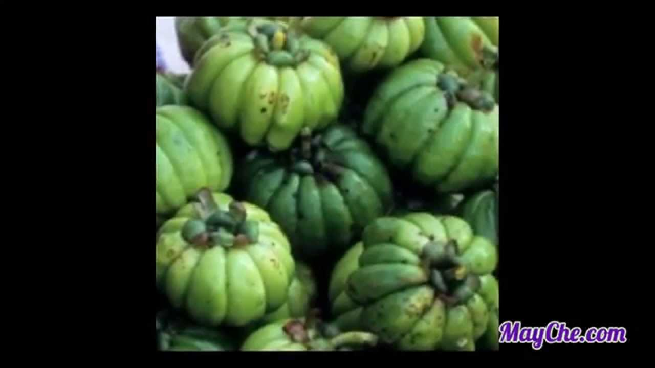 garcinia cambogia in bengali name