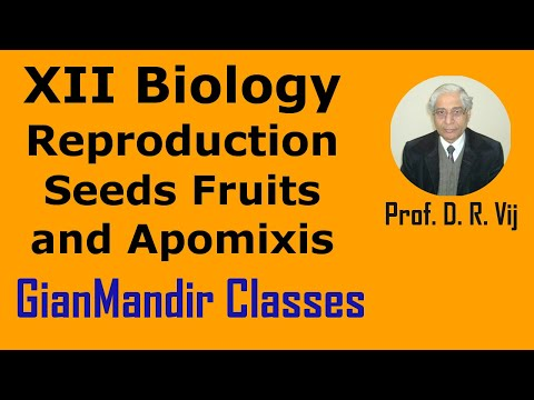 XII Biology - Seeds Fruits and Apomixis by Inderpal Sir