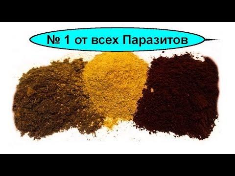 Русская тройчатка от всех паразитов №1. Как приготовить и принимать тройчатку для 100% эффекта