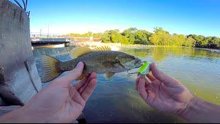 I catch really big fish