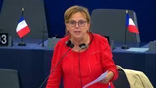 Dominique Bilde sur le Corps européen de solidarité