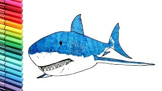 Drawing And Coloring Shark - Learning Color with Sea Animals Nursery Rhymes