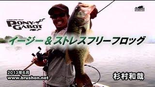 イージー&ストレスフリーフロッグ ポニーガボット/杉村和哉・琵琶湖 thumbnail