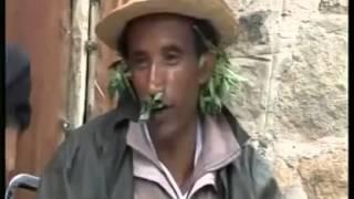 Comedy : Asefa Tegne - Diaspora ዲያስፖራ