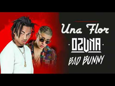Una Flor - Ozuna Ft Bad Bunny | Remix 2018 (Audio Oficial)