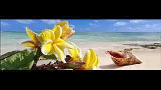 Je Vole ~Perfect ~Jusqu'au bout du monde ~Atirana..Medley Tahiti