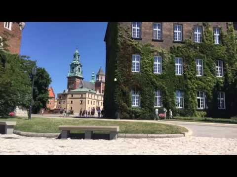 Wawel Royal Castle, Auschwitz, and Polish Dinner / Krakow, Poland