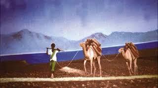 FAADUMO AXMED - JACAYL MIYUU II SUGAYA DJIBOUTI, JABUUTI, SOMALI, K...