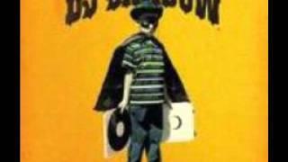DJ Shadow Changeling