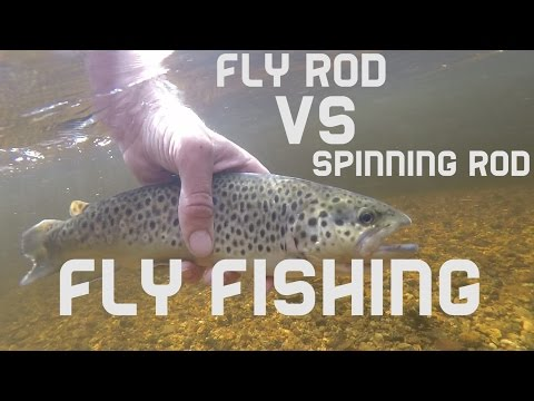 Fly Rod Vs Spinning Rod Fly Fishing For Trout. Wood River Rhode Island
