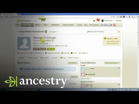 Timely Tips to Trim the Family Tree | Ancestry
