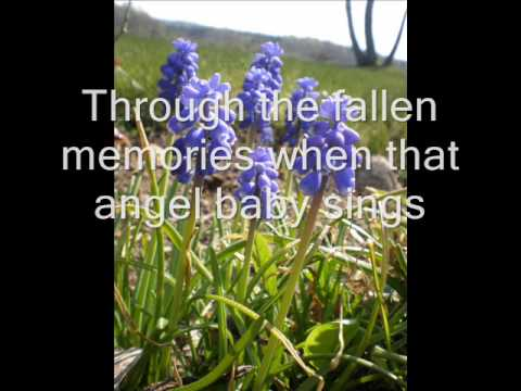 Foy Vance - Homebird + Lyrics