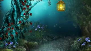 Волшебство в ночи