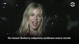 Критики назвали «Довлатова» Алексея Германа-младшего фаворитом Берлинского кинофестиваля