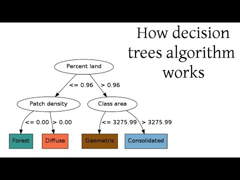 how decision trees algorithm works youtube