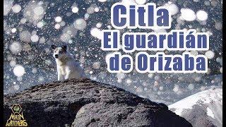 El Ángel Guardián de Orizaba