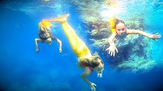 Mermaids swimming in the sea by Carla Underwater
