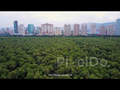 Palm Beach Road Sea Woods Navi Mumbai