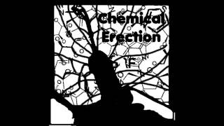 Chemical Erection - Born, Raped, Killed, used to fertilize my soil and rebuild civilisation