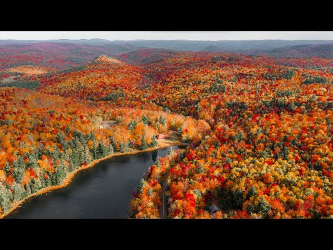 Peak Fall Foliage in New England (Experience Autumn)