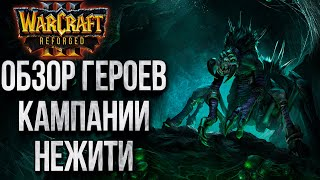 ОБЗОР ЮНИТОВ КАМПАНИИ НЕЖИТИ: Как Выглядят Ключевые Персонажи Warcraft 3 Reforged
