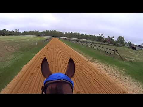 Race Horses Training GoPro Hero Helmet Camera POV