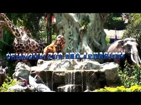 เพลงสวนสัตว์เชียงใหม่ | CHIANGMAI ZOO VARIETY