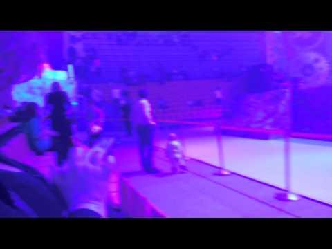 Видео, Елка в Лужниках